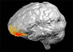 ЭЭГ мозга во время «божественного откровения»